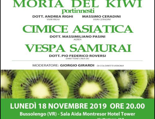 18 novembre 2019 convegno sul kiwi a Bussolengo
