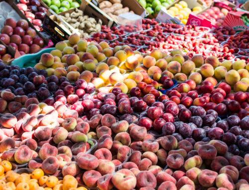 3 delibere della Giunta della Regione Veneto a favore dell'agricoltura